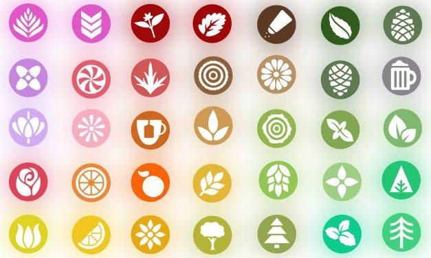 Qué son los terpenos del cannabis y cuál es su función